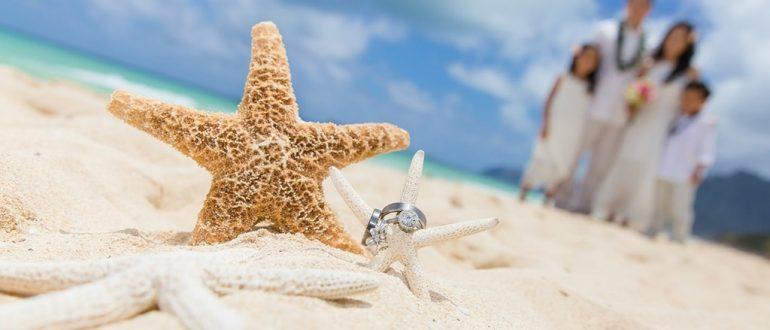 Чем примечателен отдых на Затоке для отдыхающих?