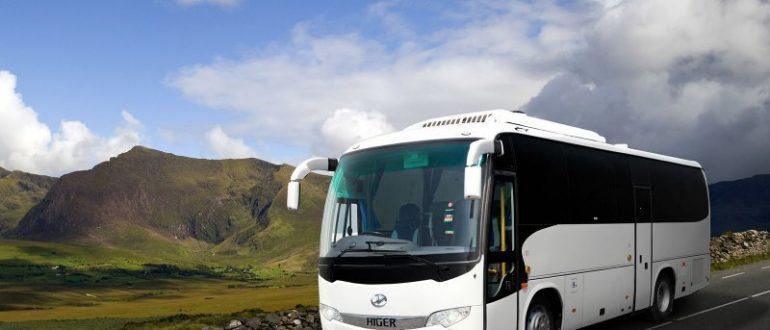 Автобусные перевозки: преимущество и отличие