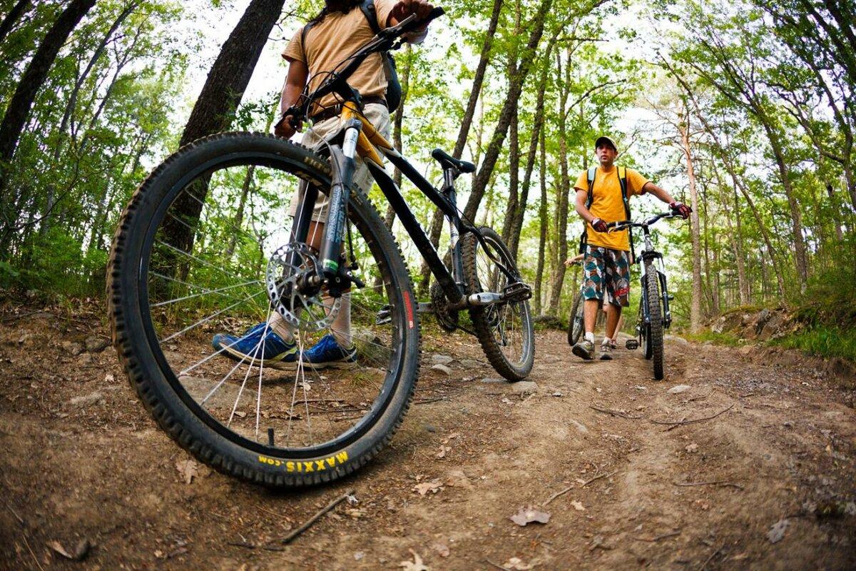 Польза тренировки на велосипеде - с чего начать?